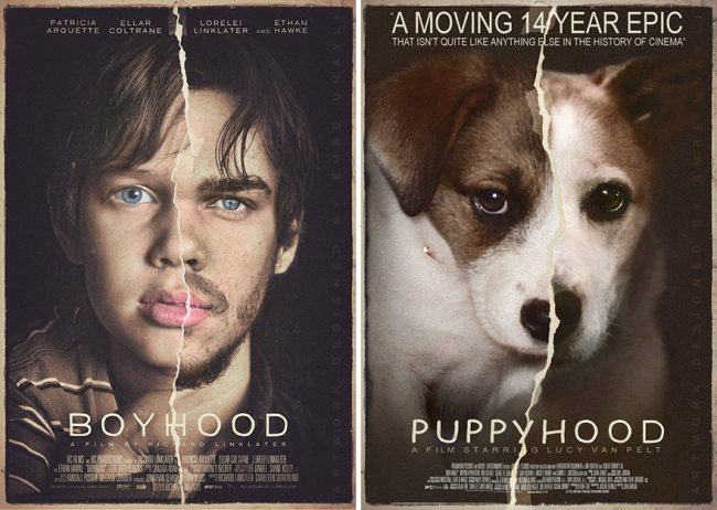 i-photoshop-my-dog-into-movie-posters-5984298a1dbff__880